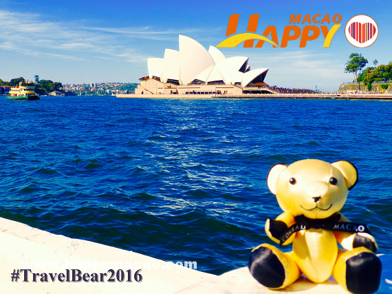 Conrad_Bear_sitting_by_Sydney_Opera_House_-_TravelBear2016