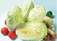 白菜的營養價值