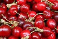 吃櫻桃可以改善痛風?