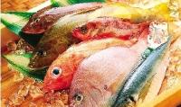 常食魚 促健康