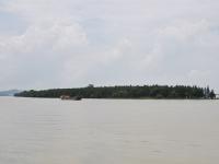 鹹潮洶湧珠澳全線停取水