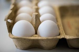 美國雞蛋疑受沙門氏菌污染