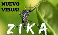 衛生局呼籲市民防範寨卡病毒病