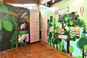 自然博物館爬蟲動物區