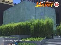 全球首間竹林AppleStore開幕