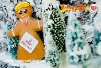 聖誕及新年大餐/自助餐一覽表 2011