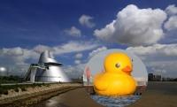 黃色小鴨游到澳門