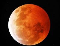 月全蝕明晚出現