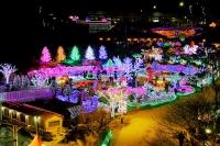 韓國冬季燈光慶典2020
