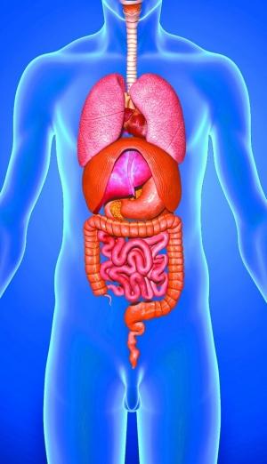 談談腸炎與腸癌