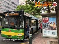 巴士恢復全日營運
