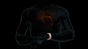 Apple Watch推出心電圖及心律不整通知功能