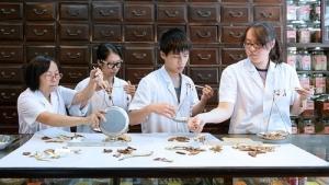 第四期名老中醫臨床經驗傳承專題培訓班