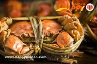 尚坊正宗泰式大閘蟹料理