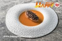 米芝蓮港澳美食盛宴系列 -- 國際大廚