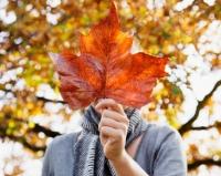 春捂秋凍  秋天也不可「凍」