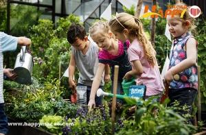 夏日小童綠色學堂