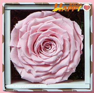 Cha Bei甜蜜鮮花禮盒