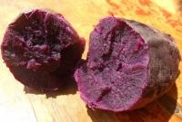 紫薯營養多