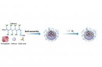 澳大開發射線納米倍增器強化抗癌治療效果