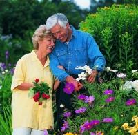 健康生活助預防〝老人失智症〞