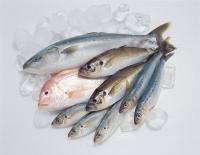什麼人要對魚肉小心?