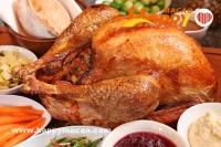 十一月感恩盛宴