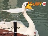 悠遊南灣踩水上單車
