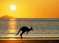 澳洲予澳居民簽證簡便措施