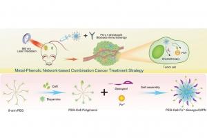 澳大發現納米藥物有效抑制腫瘤生長及轉移